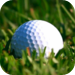 Golf Handicap Calculator - For A Golfer HCP Index